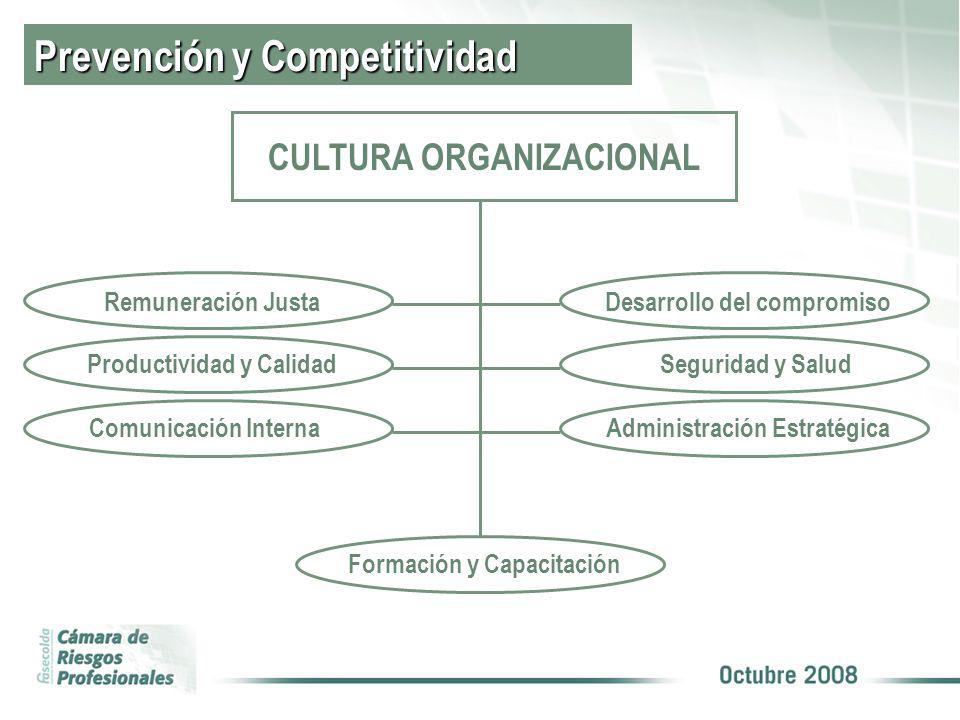 Prevención y Competitividad CULTURA ORGANIZACIONAL Desarrollo del compromiso Seguridad y Salud Administración Estratégica Remuneración Justa Productividad y Calidad Comunicación Interna Formación y Capacitación
