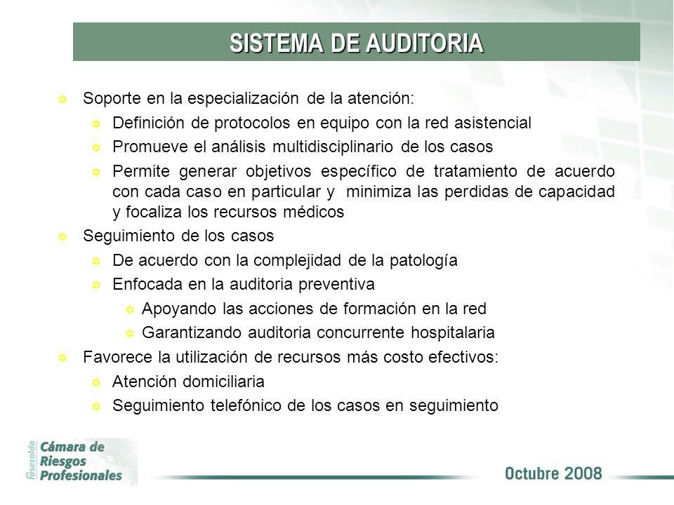 Y Soporte en la especialización de la atención: Y Definición de protocolos en equipo con la red asistencial Y Promueve el análisis multidisciplinario