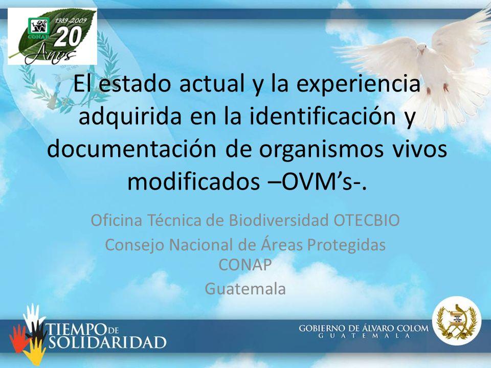 El estado actual y la experiencia adquirida en la identificación y documentación de organismos vivos modificados –OVMs-. Oficina Técnica de Biodiversi