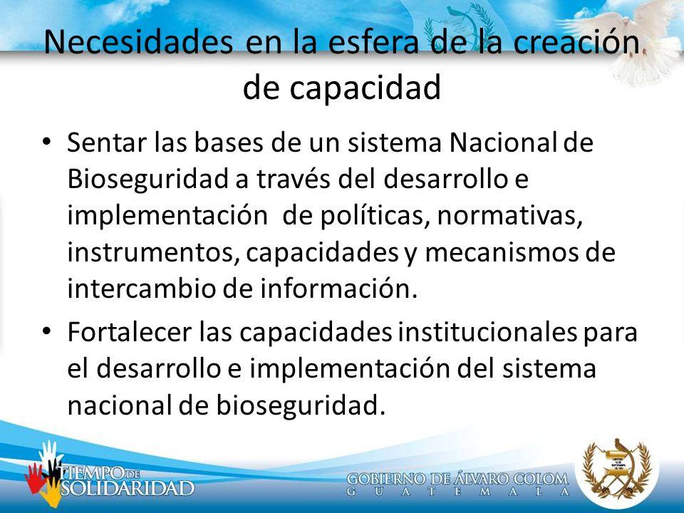 Necesidades en la esfera de la creación de capacidad Sentar las bases de un sistema Nacional de Bioseguridad a través del desarrollo e implementación