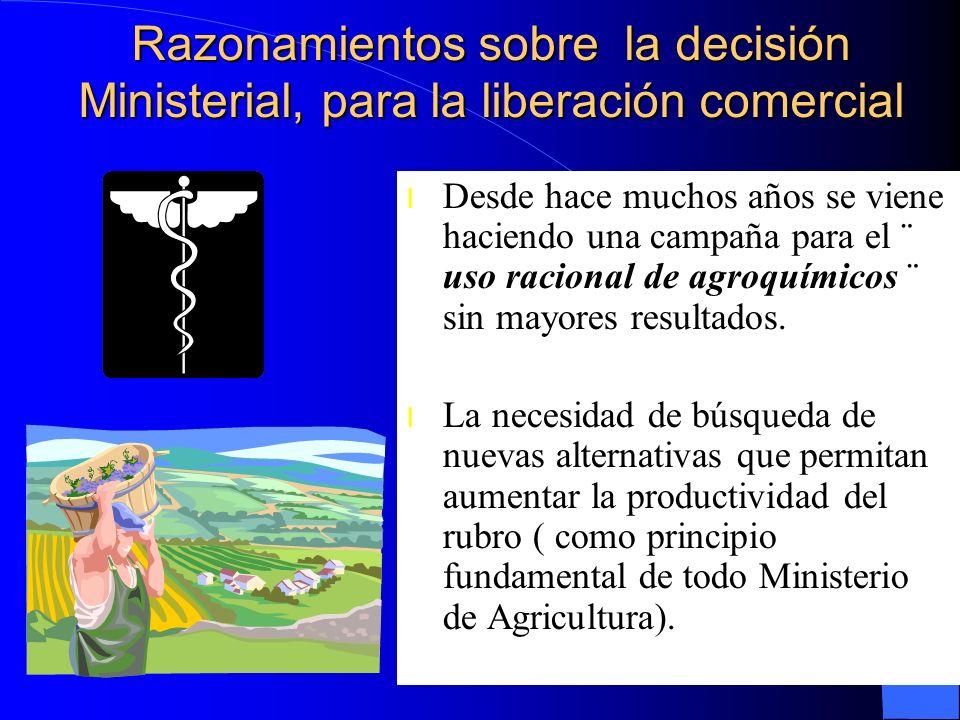Razonamientos sobre la decisión Ministerial, para la liberación comercial l Desde hace muchos años se viene haciendo una campaña para el ¨ uso raciona