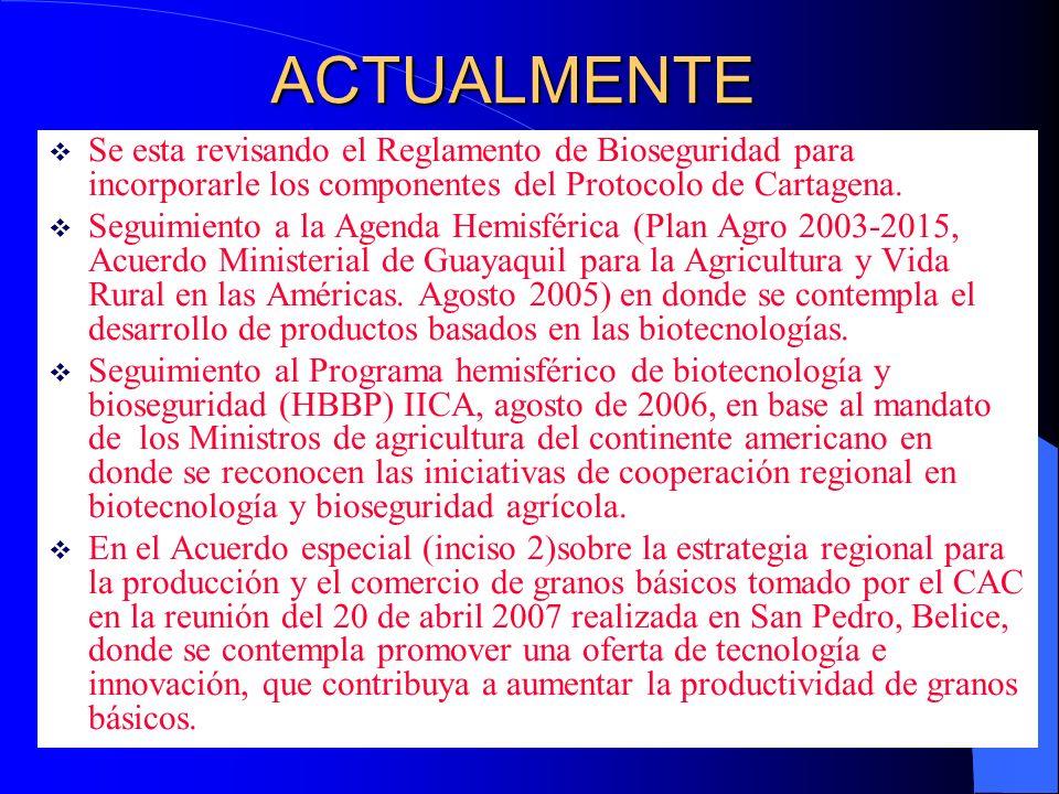 ACTUALMENTE Se esta revisando el Reglamento de Bioseguridad para incorporarle los componentes del Protocolo de Cartagena. Seguimiento a la Agenda Hemi