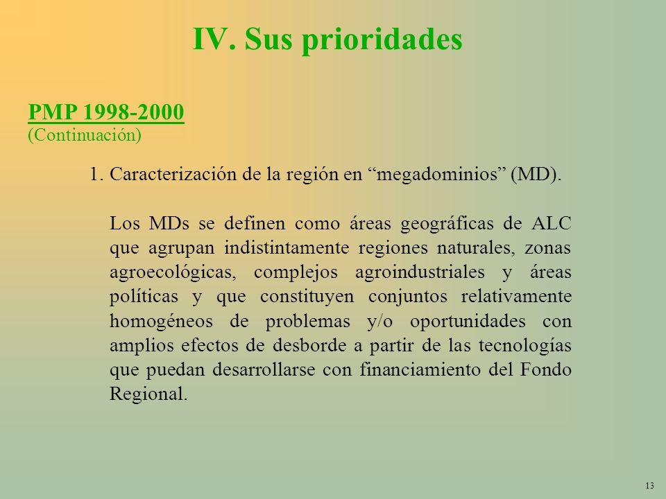 13 IV. Sus prioridades 1.Caracterización de la región en megadominios (MD).