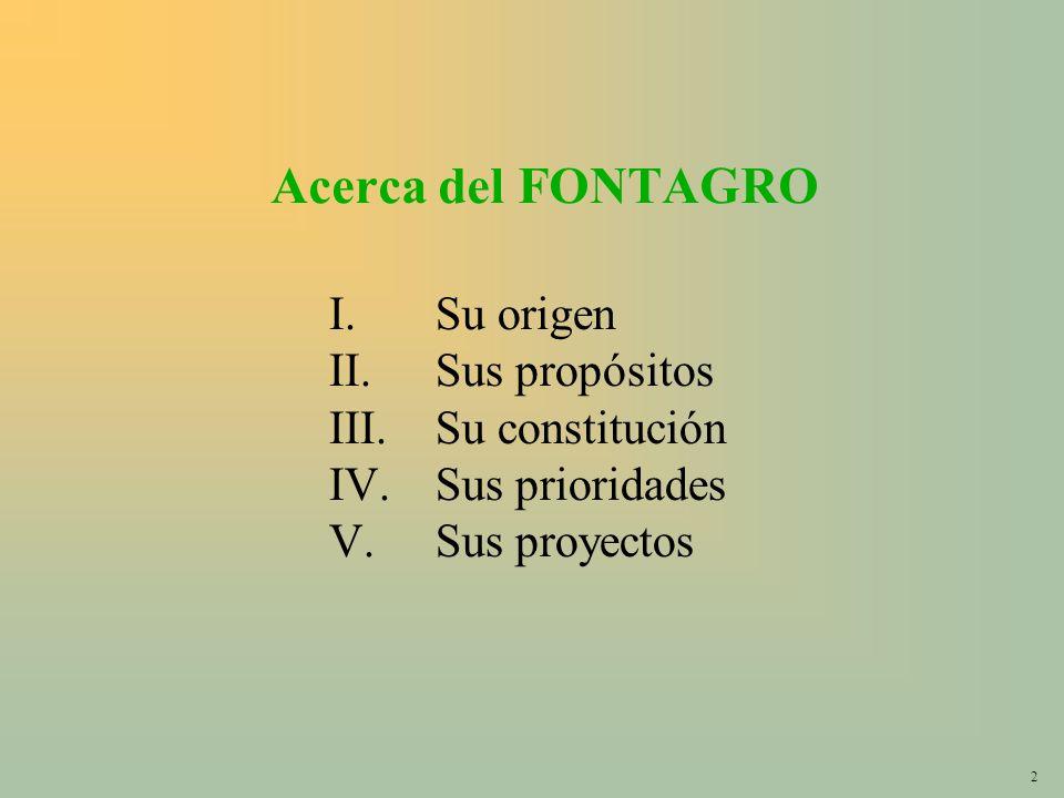 2 Acerca del FONTAGRO I.Su origen II.Sus propósitos III.Su constitución IV.Sus prioridades V.Sus proyectos