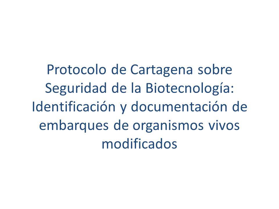 Protocolo de Cartagena sobre Seguridad de la Biotecnología: Identificación y documentación de embarques de organismos vivos modificados