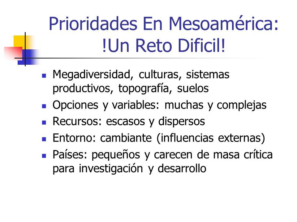 Prioridades En Mesoamérica: !Un Reto Dificil.