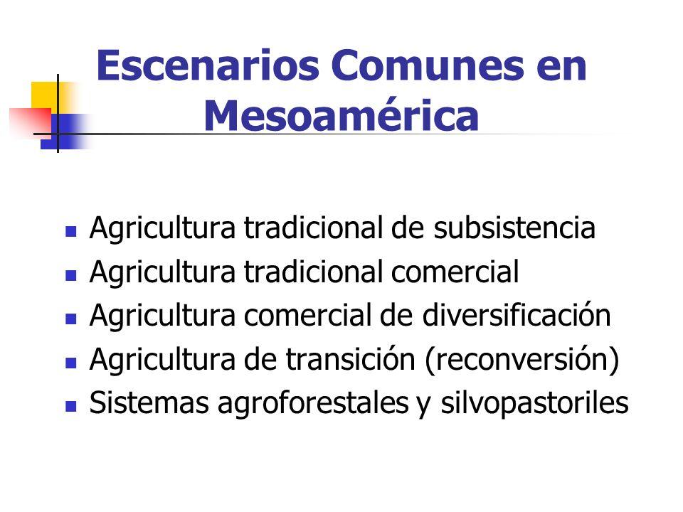 Escenarios Comunes en Mesoamérica Agricultura tradicional de subsistencia Agricultura tradicional comercial Agricultura comercial de diversificación Agricultura de transición (reconversión) Sistemas agroforestales y silvopastoriles