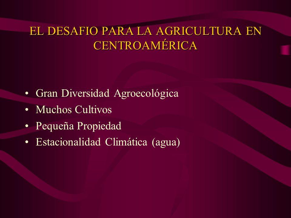 EL DESAFIO PARA LA AGRICULTURA EN CENTROAMÉRICA Gran Diversidad Agroecológica Muchos Cultivos Pequeña Propiedad Estacionalidad Climática (agua)