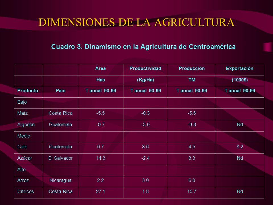 DIMENSIONES DE LA AGRICULTURA Cuadro 3. Dinamismo en la Agricultura de Centroamérica ÁreaProductividadProducciónExportación Has(Kg/Ha)TM(1000$) Produc