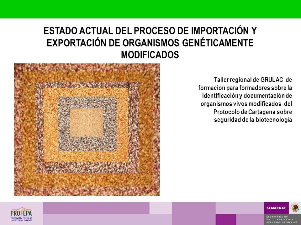 Taller regional de GRULAC de formación para formadores sobre la identificación y documentación de organismos vivos modificados del Protocolo de Cartag