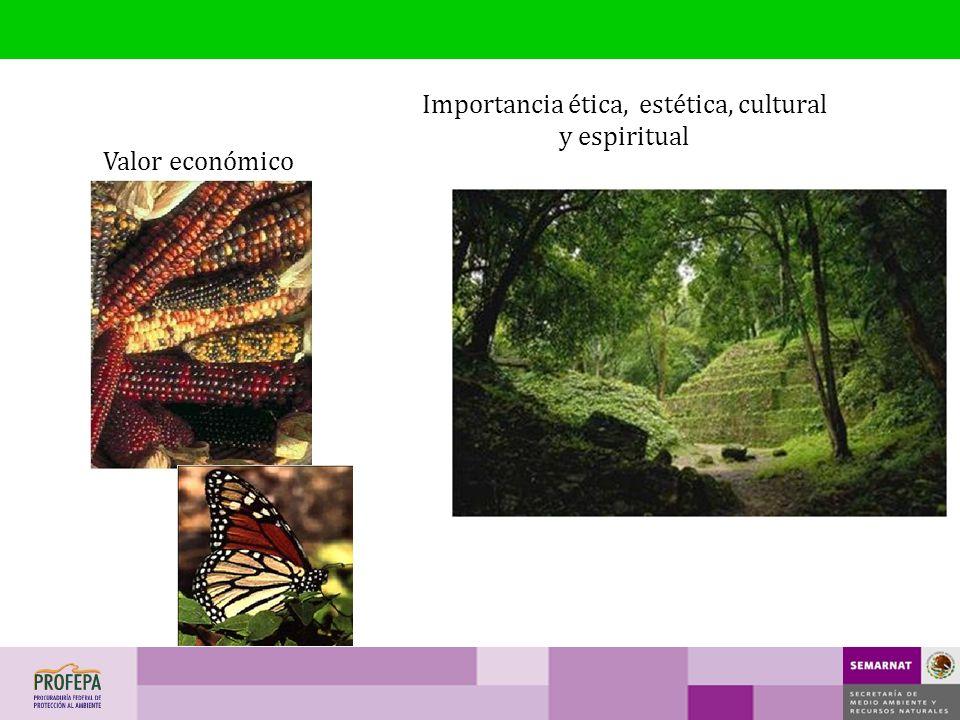 Valor económico Importancia ética, estética, cultural y espiritual