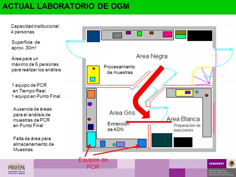 Procesamiento de muestras Preparación de reacciones Extracción de ADN Superficie de aprox. 30m 2 Área para un máximo de 5 personas para realizar los a