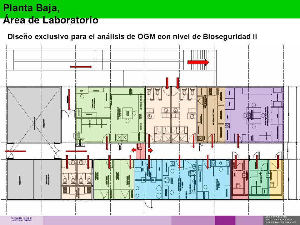 Planta Baja, Área de Laboratorio Diseño exclusivo para el análisis de OGM con nivel de Bioseguridad II