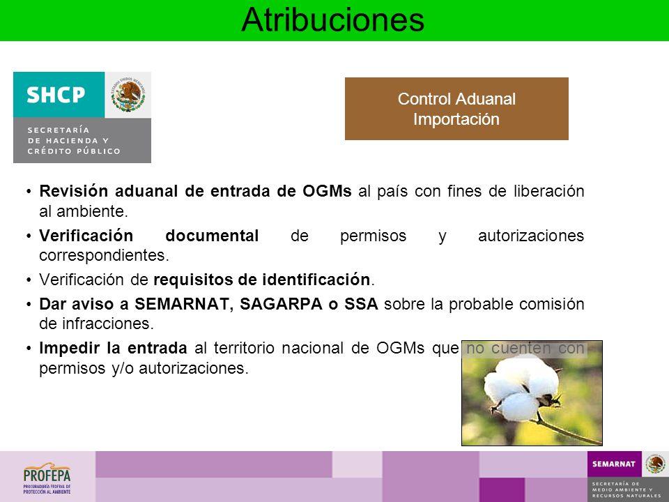 Revisión aduanal de entrada de OGMs al país con fines de liberación al ambiente. Verificación documental de permisos y autorizaciones correspondientes
