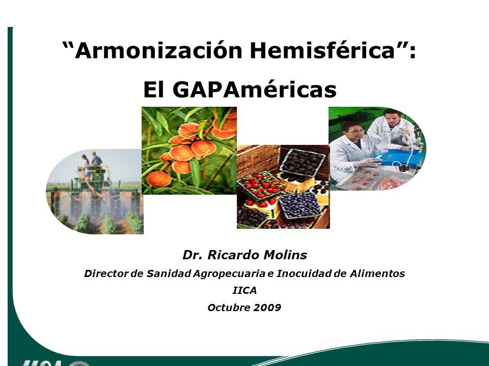 Dr. Ricardo Molins Director de Sanidad Agropecuaria e Inocuidad de Alimentos IICA Octubre 2009 Armonización Hemisférica: El GAPAméricas