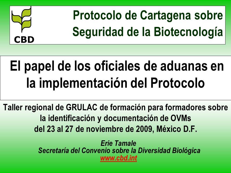 El papel de los oficiales de aduanas en la implementación del Protocolo Taller regional de GRULAC de formación para formadores sobre la identificación