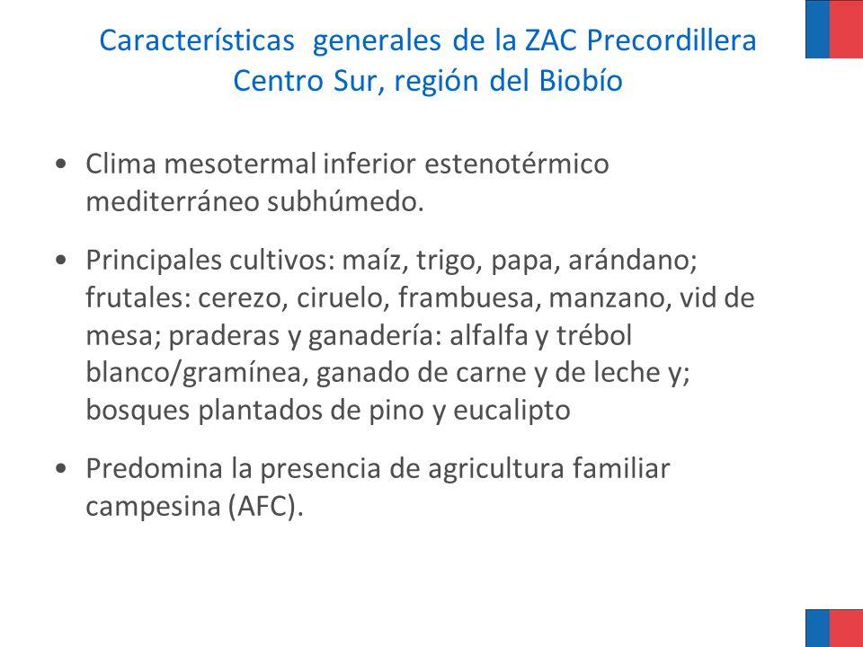 Características generales de la ZAC Precordillera Centro Sur, región del Biobío Clima mesotermal inferior estenotérmico mediterráneo subhúmedo. Princi