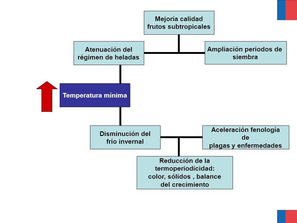 Temperatura mínima Disminución del frío invernal Reducción de la termoperiodicidad: color, sólidos, balance del crecimiento Atenuación del régimen de