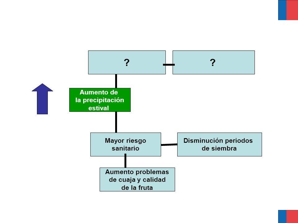 Aumento de la precipitación estival ? Disminución periodos de siembra Mayor riesgo sanitario ? Aumento problemas de cuaja y calidad de la fruta