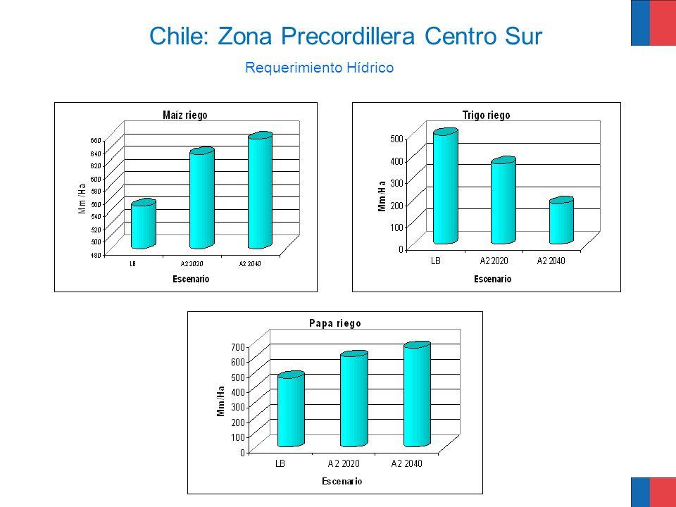 Requerimiento Hídrico Chile: Zona Precordillera Centro Sur