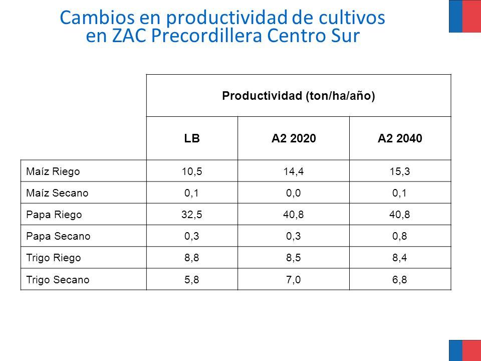 Cambios en productividad de cultivos en ZAC Precordillera Centro Sur Productividad (ton/ha/año) LBA2 2020A2 2040 Maíz Riego10,514,415,3 Maíz Secano0,1