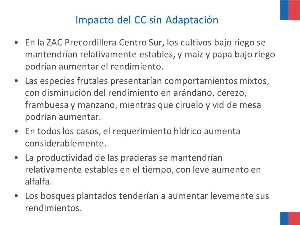 Impacto del CC sin Adaptación En la ZAC Precordillera Centro Sur, los cultivos bajo riego se mantendrían relativamente estables, y maíz y papa bajo ri