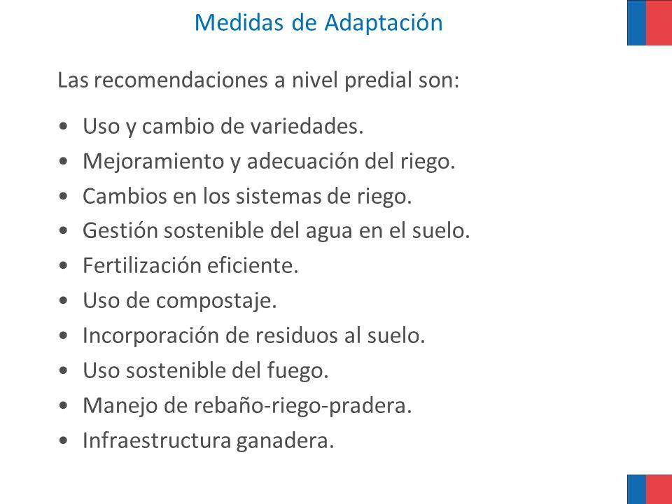 Medidas de Adaptación Las recomendaciones a nivel predial son: Uso y cambio de variedades. Mejoramiento y adecuación del riego. Cambios en los sistema