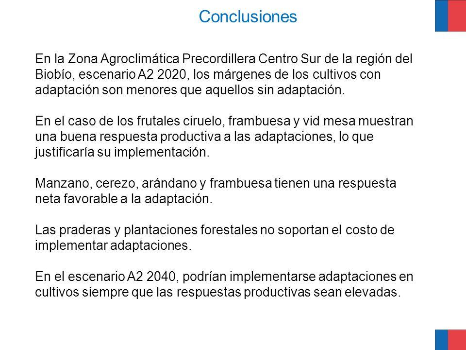 En la Zona Agroclimática Precordillera Centro Sur de la región del Biobío, escenario A2 2020, los márgenes de los cultivos con adaptación son menores