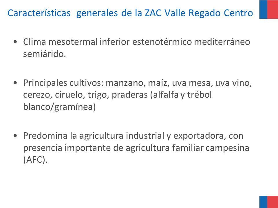Características generales de la ZAC Valle Regado Centro Clima mesotermal inferior estenotérmico mediterráneo semiárido. Principales cultivos: manzano,