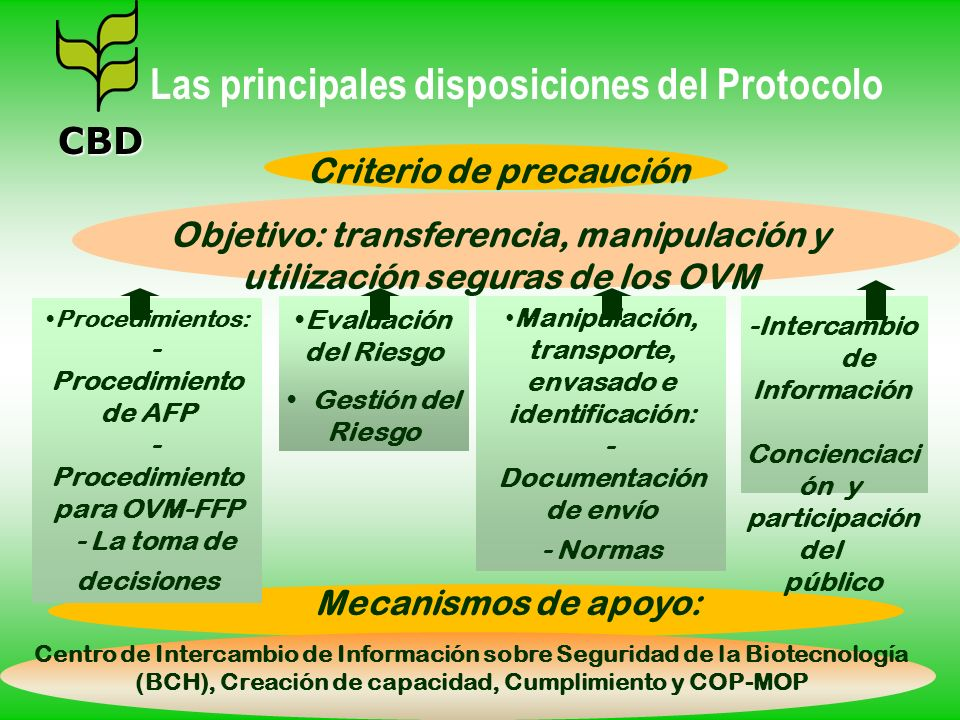 Criterio de precaución Objetivo: transferencia, manipulación y utilización seguras de los OVM Centro de Intercambio de Información sobre Seguridad de