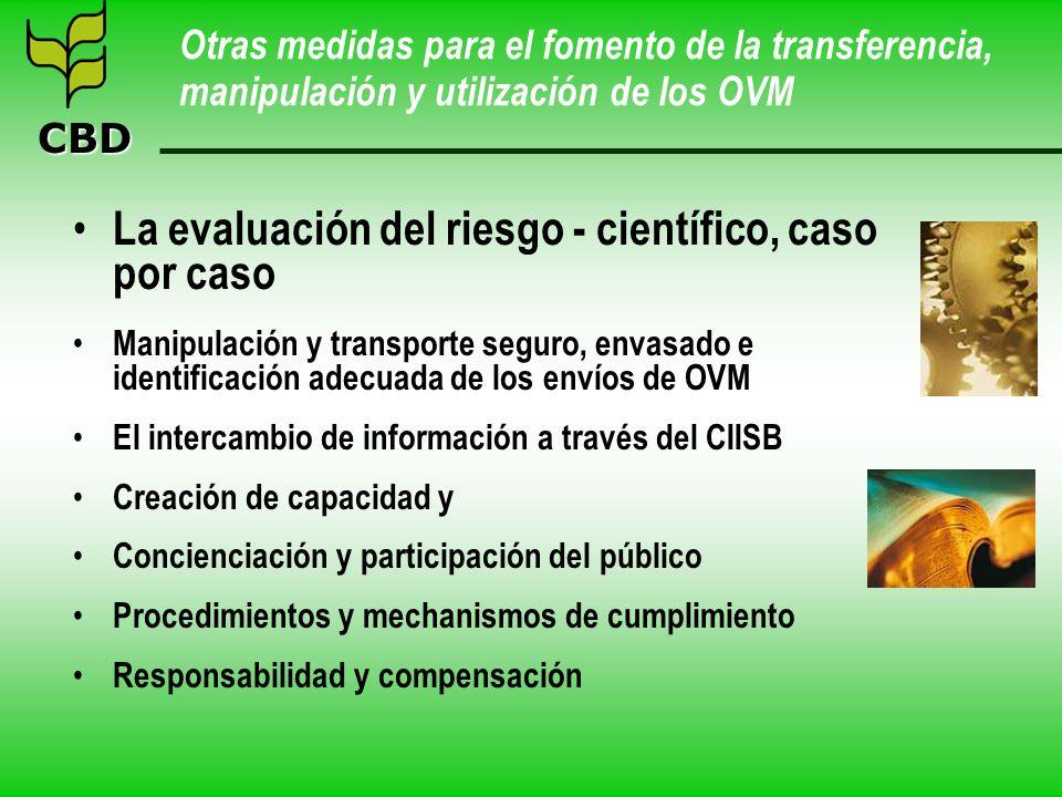 CBD Otras medidas para el fomento de la transferencia, manipulación y utilización de los OVM La evaluación del riesgo - científico, caso por caso Mani