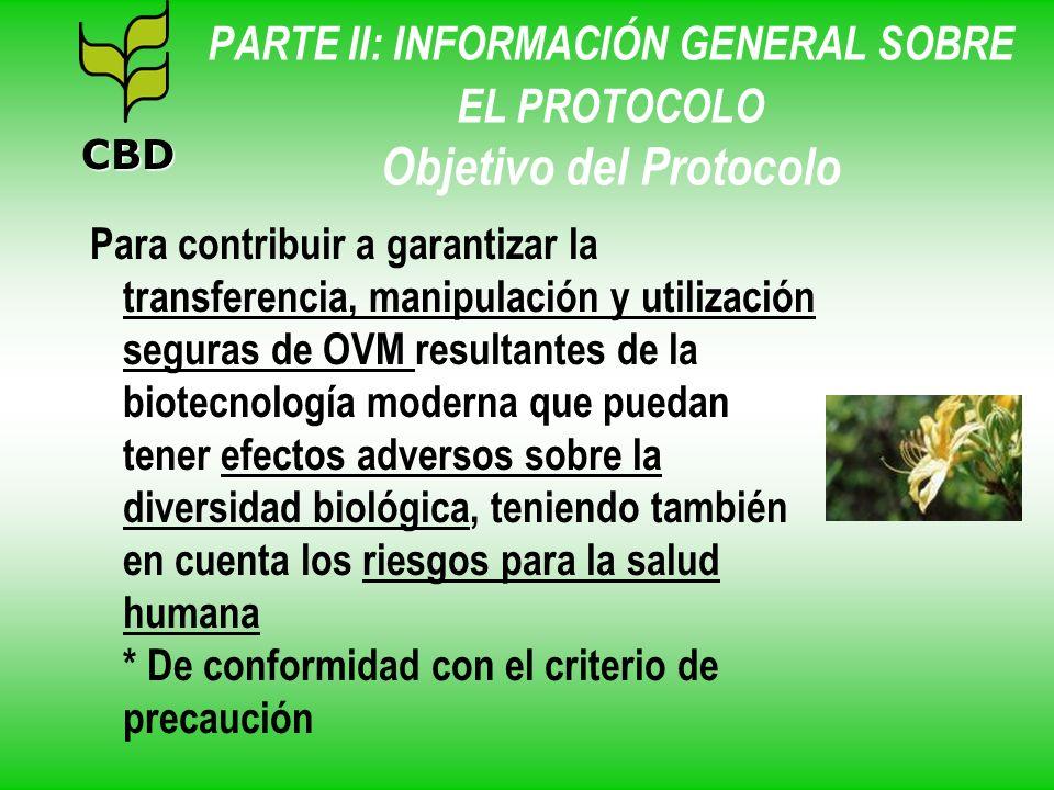 PARTE II: INFORMACIÓN GENERAL SOBRE EL PROTOCOLO Objetivo del Protocolo Para contribuir a garantizar la transferencia, manipulación y utilización segu
