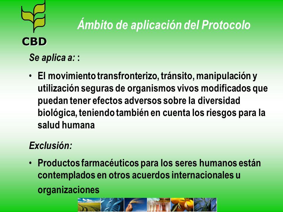 Categorias de OVM OVM para su introducción intencional en el medio ambiente (tales como semillas y peces vivos) Los OVM destinados a uso directo como alimento humano, animal o para procesamiento, los OVM-FFP (tales como productos agrícolas básicos - maíz, canola y algodón), OVM para uso confinado (como las bacterias para experimentos científicos en laboratorio) CBD