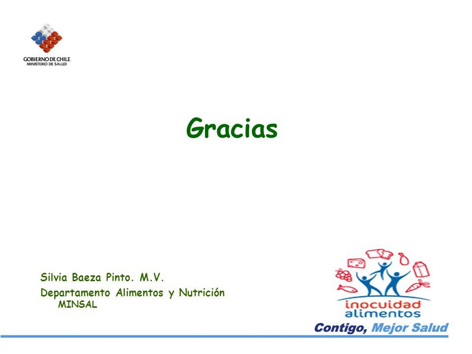 Gracias Silvia Baeza Pinto. M.V. Departamento Alimentos y Nutrición MINSAL