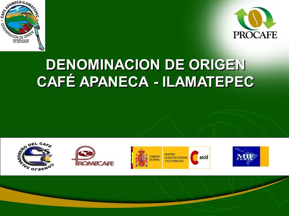 DENOMINACION DE ORIGEN CAFÉ APANECA - ILAMATEPEC
