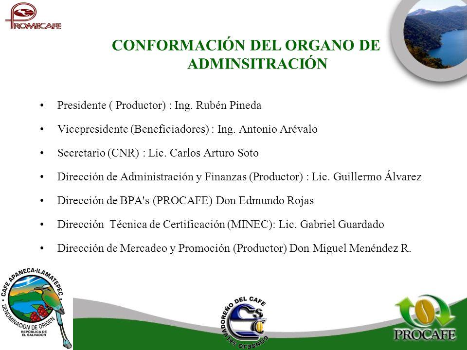 CONFORMACIÓN DEL ORGANO DE ADMINSITRACIÓN Presidente ( Productor) : Ing. Rubén Pineda Vicepresidente (Beneficiadores) : Ing. Antonio Arévalo Secretari