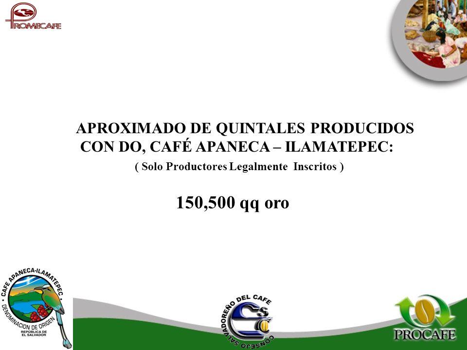 APROXIMADO DE QUINTALES PRODUCIDOS CON DO, CAFÉ APANECA – ILAMATEPEC: ( Solo Productores Legalmente Inscritos ) 150,500 qq oro
