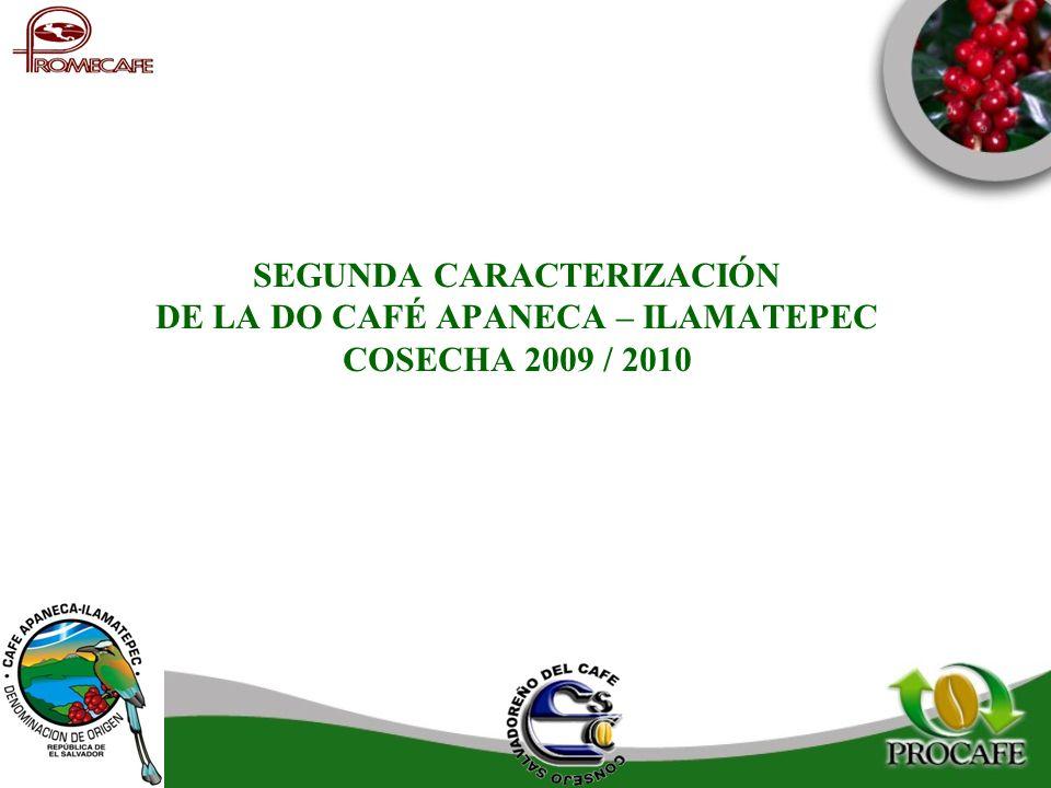 SEGUNDA CARACTERIZACIÓN DE LA DO CAFÉ APANECA – ILAMATEPEC COSECHA 2009 / 2010