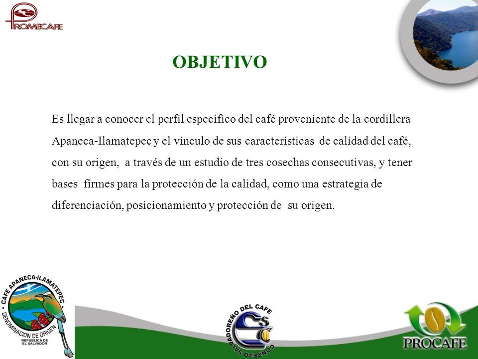 OBJETIVO Es llegar a conocer el perfil específico del café proveniente de la cordillera Apaneca-Ilamatepec y el vínculo de sus características de cali
