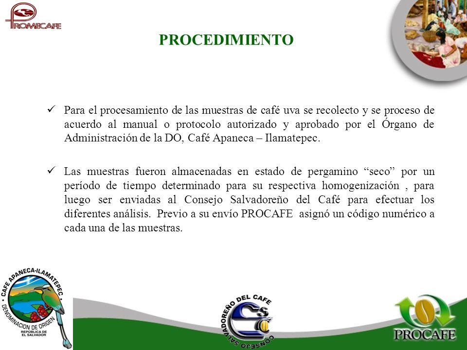 PROCEDIMIENTO Para el procesamiento de las muestras de café uva se recolecto y se proceso de acuerdo al manual o protocolo autorizado y aprobado por e