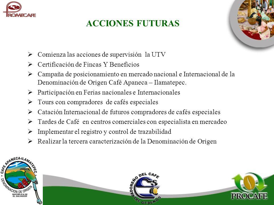 ACCIONES FUTURAS Comienza las acciones de supervisión la UTV Certificación de Fincas Y Beneficios Campaña de posicionamiento en mercado nacional e Int