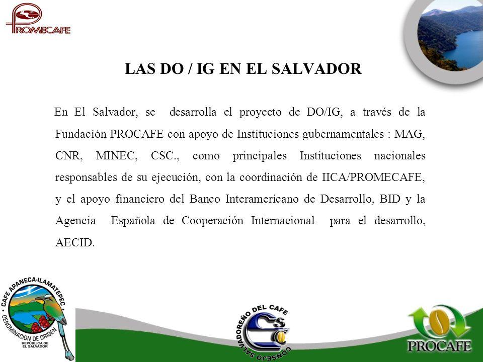 LAS DO / IG EN EL SALVADOR En El Salvador, se desarrolla el proyecto de DO/IG, a través de la Fundación PROCAFE con apoyo de Instituciones gubernament