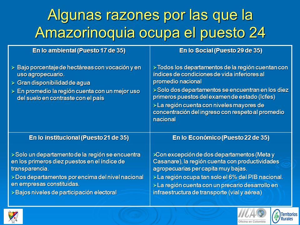 Algunas razones por las que la Amazorinoquia ocupa el puesto 24 En lo ambiental (Puesto 17 de 35) Bajo porcentaje de hectáreas con vocación y en uso a