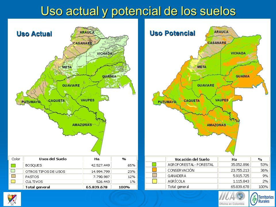 Uso actual y potencial de los suelos Uso Actual Uso Potencial