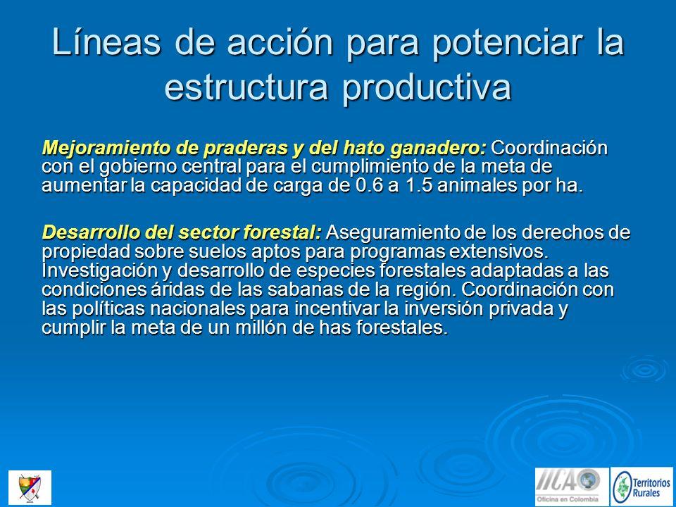 Mejoramiento de praderas y del hato ganadero: Coordinación con el gobierno central para el cumplimiento de la meta de aumentar la capacidad de carga d