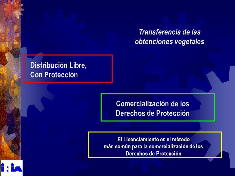 Transferencia de las obtenciones vegetales Distribución Libre, Con Protección Comercialización de los Derechos de Protección El Licenciamiento es el método más común para la comercialización de los Derechos de Protección