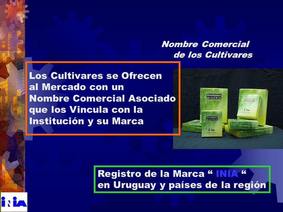Nombre Comercial de los Cultivares Registro de la Marca INIA en Uruguay y países de la región Los Cultivares se Ofrecen al Mercado con un Nombre Comercial Asociado que los Vincula con la Institución y su Marca