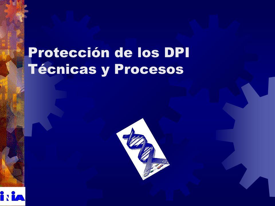 Protección de los DPI Técnicas y Procesos