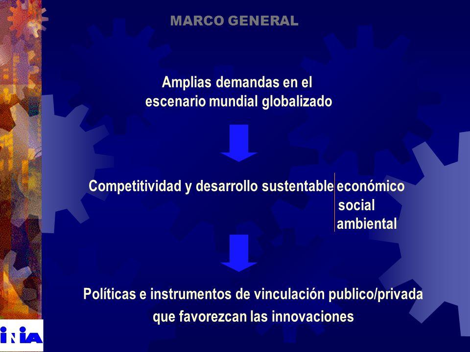 Políticas e instrumentos de vinculación publico/privada que favorezcan las innovaciones MARCO GENERAL Amplias demandas en el escenario mundial globalizado Competitividad y desarrollo sustentable económico social ambiental
