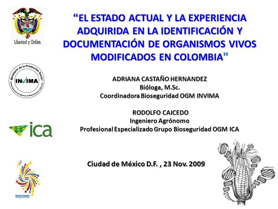 EL ESTADO ACTUAL Y LA EXPERIENCIA ADQUIRIDA EN LA IDENTIFICACIÓN Y DOCUMENTACIÓN DE ORGANISMOS VIVOS MODIFICADOS EN COLOMBIA EL ESTADO ACTUAL Y LA EXPERIENCIA ADQUIRIDA EN LA IDENTIFICACIÓN Y DOCUMENTACIÓN DE ORGANISMOS VIVOS MODIFICADOS EN COLOMBIA ADRIANA CASTAÑO HERNANDEZ Bióloga, M.Sc.